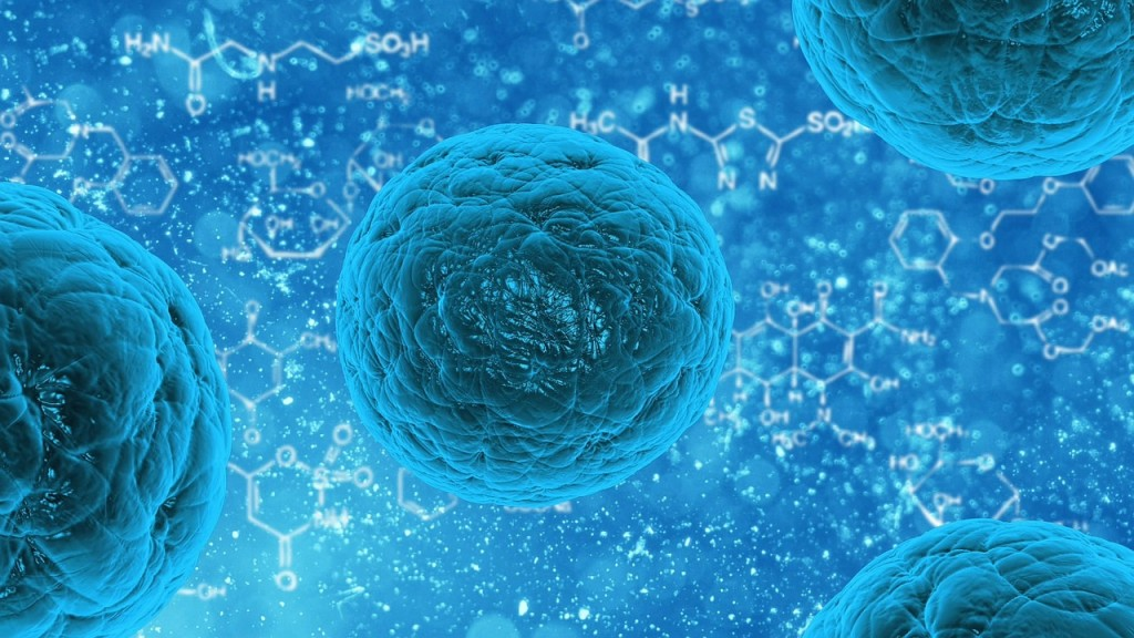 WHY ARE MINERALS SO IMPORTANT TO OVERALL HEALTH and the MISSION of HUmineral Cellular Health