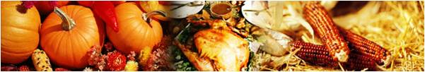 Thanksgiving Autumn Minerals HUmineral HUmic Health - Immune Boost