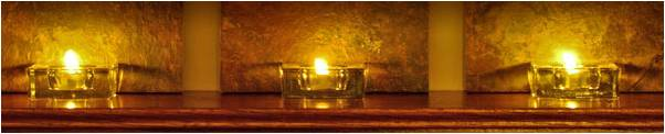 HUmineral Healthy Share Holidays HUmic Health - Immune Boost - Candles